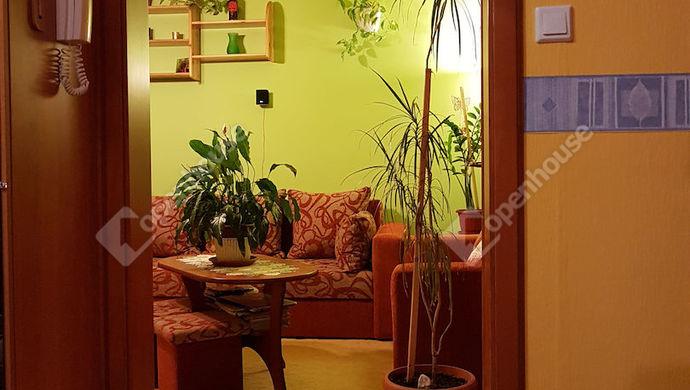 6. kép | szoba | Eladó Társasházi lakás, Békéscsaba (#143441)
