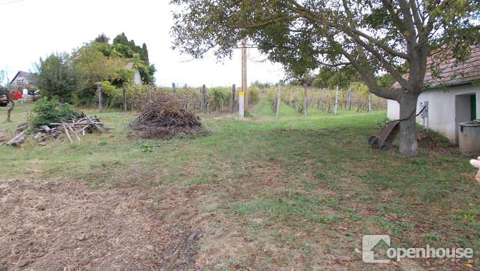 7. kép | Eladó Zárt kert, Vásárosmiske (#108916)