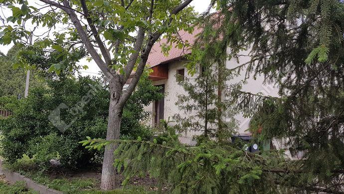 19. kép   Eladó Családi ház, Gönyű (#138909)