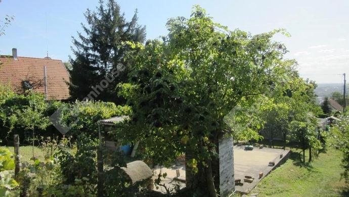 11. kép | Eladó Zárt kert, Tatabánya (#141315)