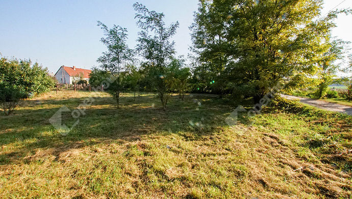 2. kép | Eladó építési telek Sárszentmiháy | Eladó Telek, Sárszentmihály (#134066)