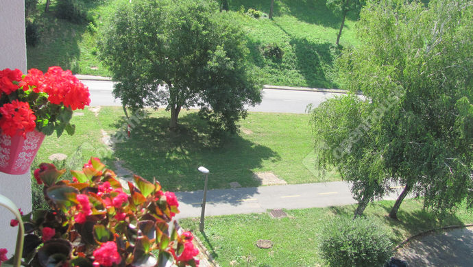 22. kép | Park | Eladó Társasházi lakás, Zalaegerszeg (#140563)