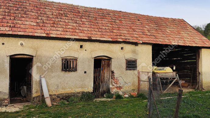 28. kép   Udvari nézet   Eladó Családi ház, Salomvár (#145820)