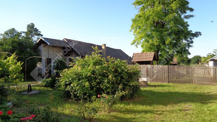 18. kép | udvari részlet | Eladó Családi ház, Magyarbánhegyes (#146996)