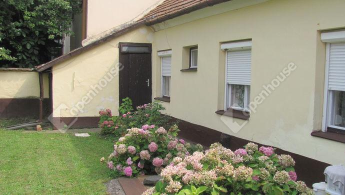 19. kép | Udvar | Eladó Családi ház, Zalaegerszeg (#142884)