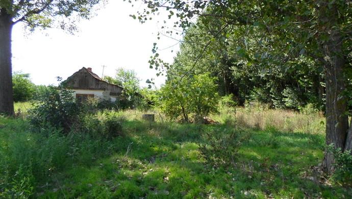 2. kép | Jászszentandrás. Tanya | Eladó Zárt kert, Jászszentandrás (#90543)