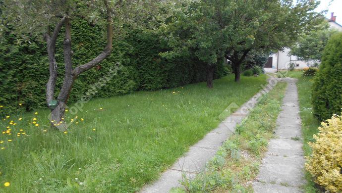 31. kép | Eladó Családi ház, Zalaegerszeg (#139231)