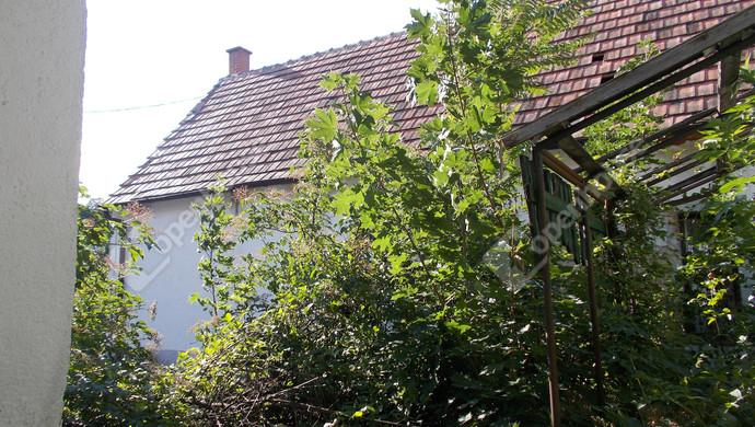 11. kép | Eladó Üzleti ingatlan, Szeleste (#132511)