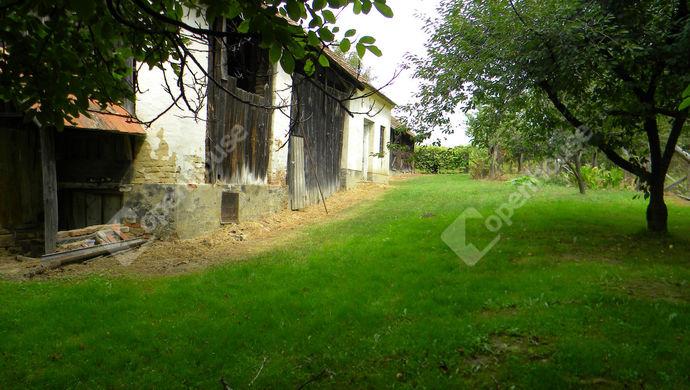 9. kép | Eladó Családi ház, Bucsuta (#141178)