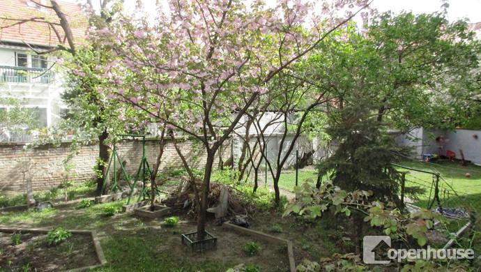 8. kép | Belső kert | Eladó Társasházi lakás, Budapest XIV. Ker. (#118337)