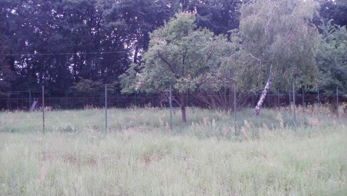 5. kép   Eladó Zárt kert, Tápiószentmárton (#107310)