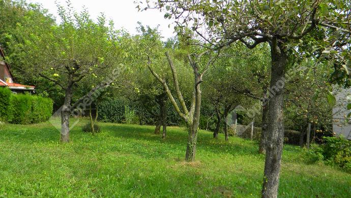 19. kép | Eladó Zárt kert, Zalaegerszeg (#140993)