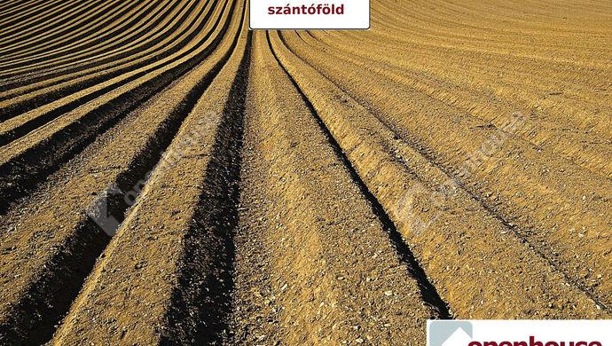 0. kép | Eladó Mezőgazdasági, Békéscsaba (#146475)