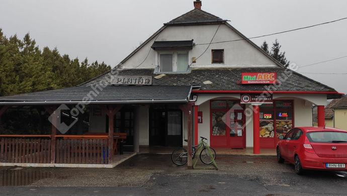 0. kép | Kiadó Családi ház, Kemendollár (#150095)
