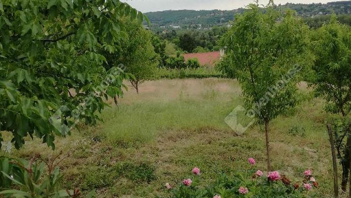3. kép | Eladó Zárt kert, Zalaegerszeg (#146695)