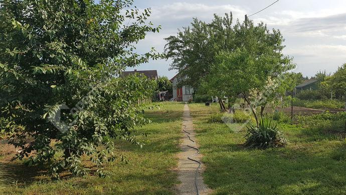 25. kép   Eladó Zárt kert, Győr (#140039)