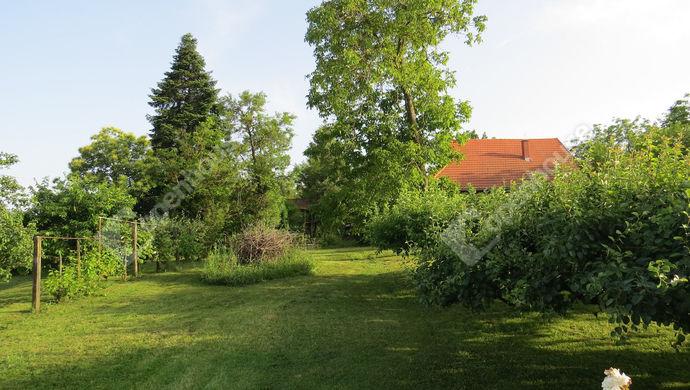 3. kép | Eladó Családi ház, Szentgyörgyvölgy (#139552)