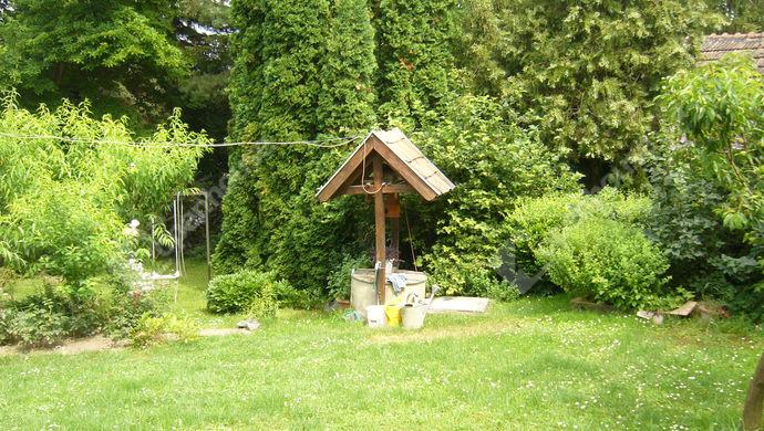 28. kép   Kert   Eladó Családi ház, Zalaszentgrót (#140307)
