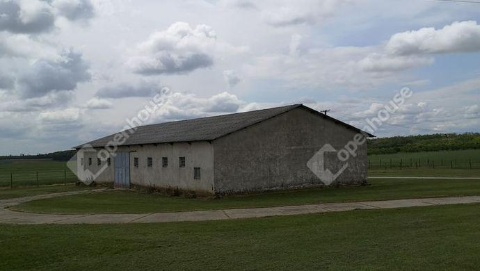 7. kép | Kiadó Ipari, Nagypáli (#145882)