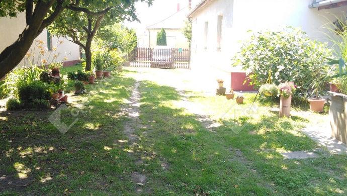 7. kép | Eladó Családi ház, Tarany (#146904)