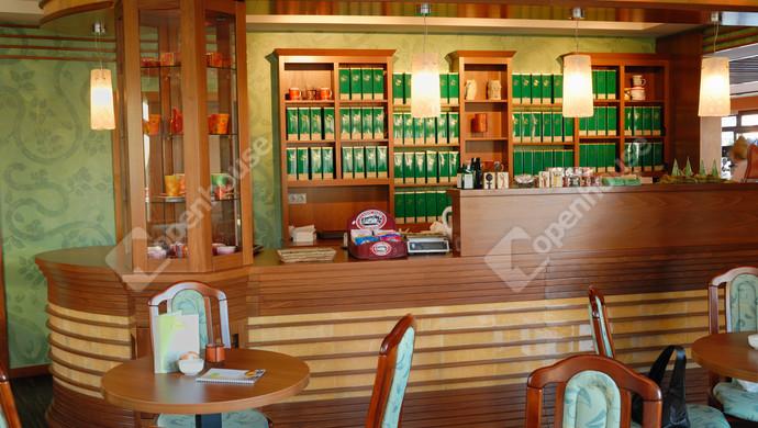 5. kép | Eladó Üzleti ingatlan, Sárvár (#119573)