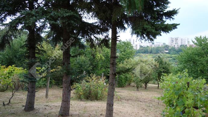 8. kép | Eladó Zárt kert, Miskolc (#133092)