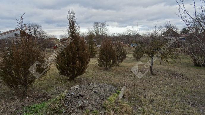 9. kép   Eladó Zárt kert, Győr (#136808)