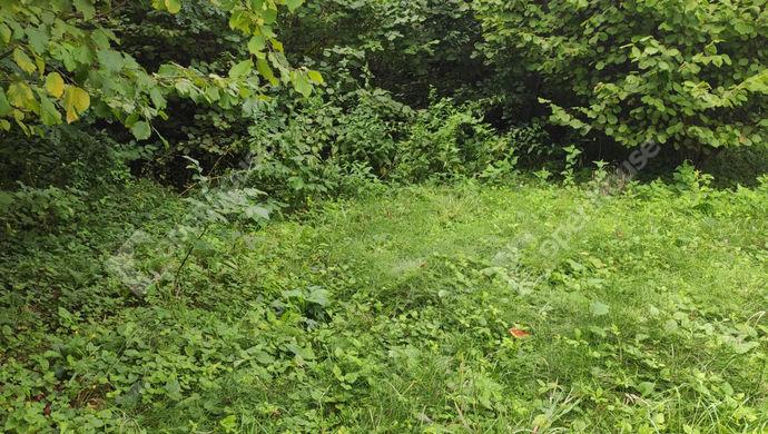 16. kép | Eladó Zárt kert, Zalaegerszeg (#153003)