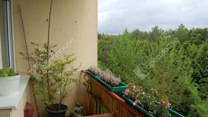 16. kép | Eladó Társasházi lakás, Nagykanizsa (#151494)