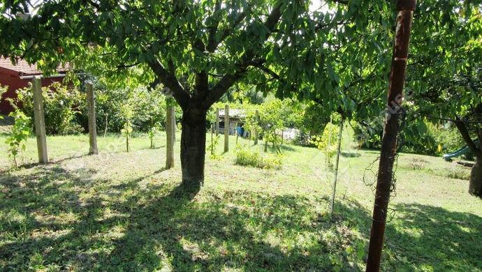 7. kép | Eladó Zárt kert, Tatabánya (#141315)