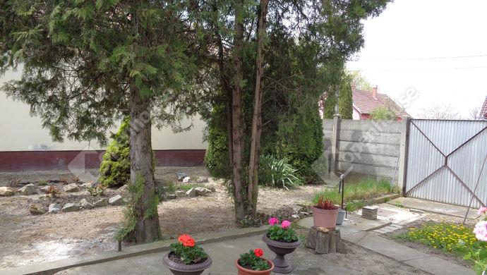 8. kép | Eladó Családi ház, Kétegyháza (#151201)
