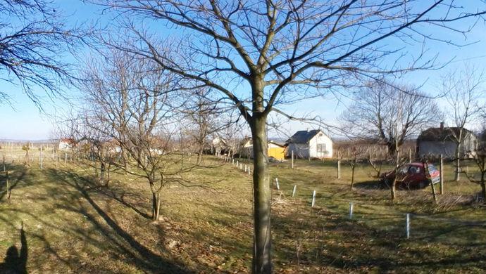 1. kép   Eladó Zárt kert, Bak (#144784)