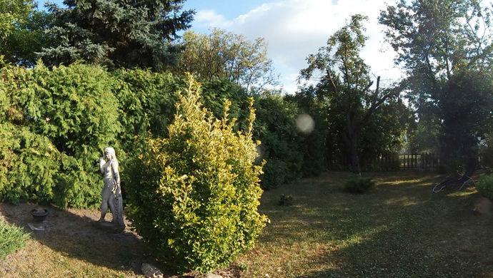0. kép | kert  | Eladó Ikerház, Győr (#140260)
