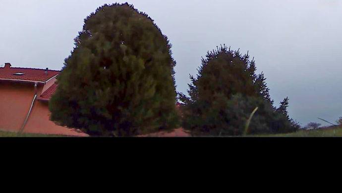 0. kép | Eladó családi ház, Székesfehérvár Felsőváros | Eladó Családi ház, Székesfehérvár (#133808)